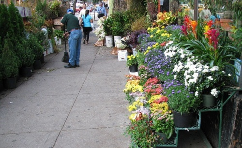 flower-district-new-york