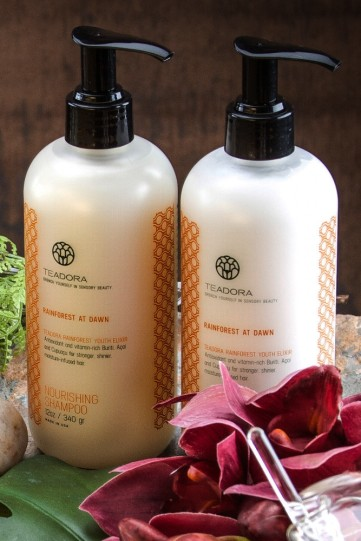original-163-152-teadora_shampoo_conditioner_set_dawn_1024x1024.jpg
